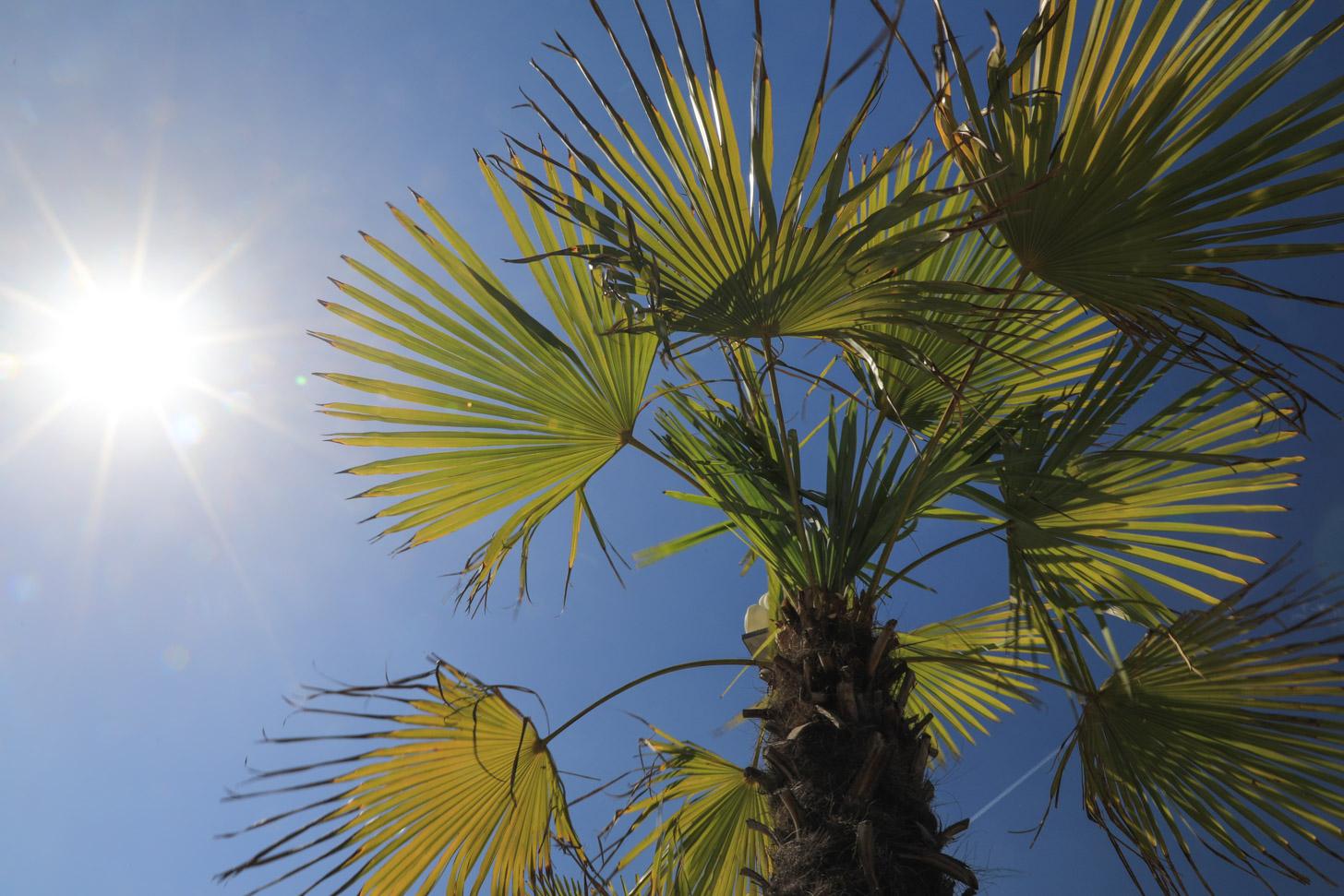 het weer in Nice